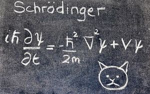The Qi of Schrodinger's Cat