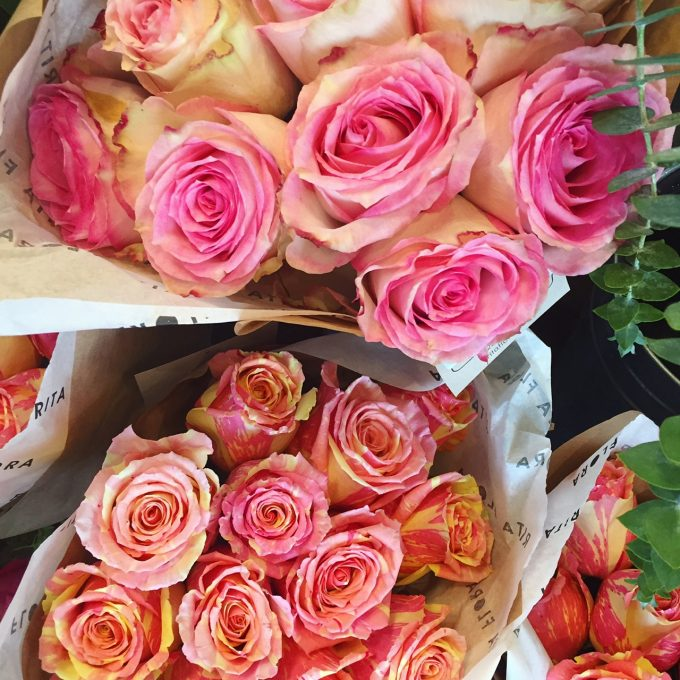 striped roses from The Tao of Dana